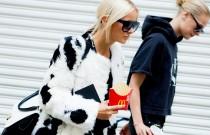 Fashion IQ Selection: StreetStyle