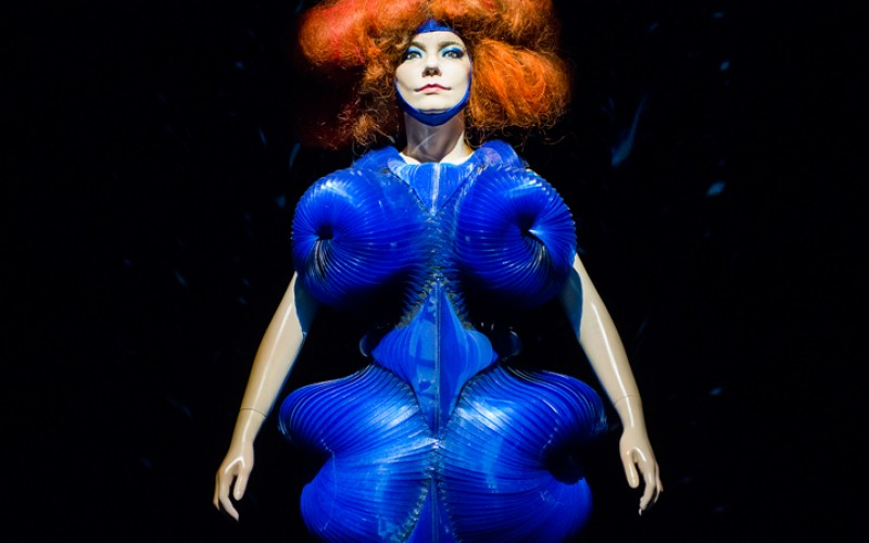 BJORK at MoMA: A Poetic Narrative Exhibit of the Multi-Talented Artist