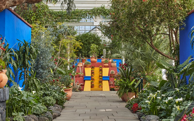 ART CULTURE: Frida Kahlo's Art, Garden & Life Exhibition in NYC